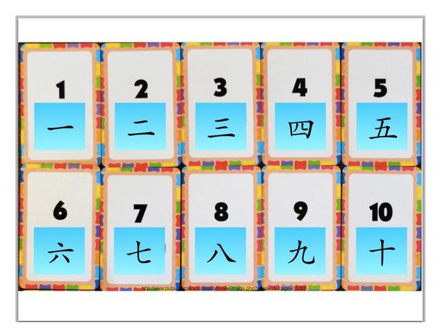 Prep Numbers by Tulip Li
