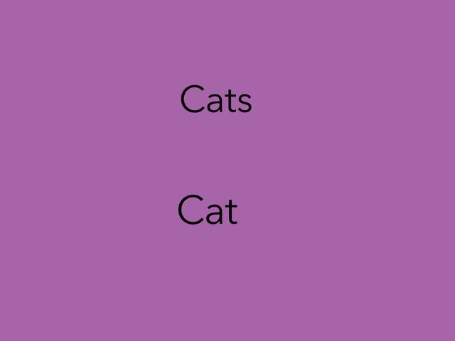 Plural & Singular Nouns by Jacqueline Johnson