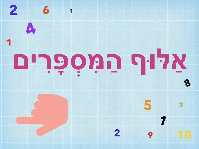 אלוף המספרים by Adi Ohad