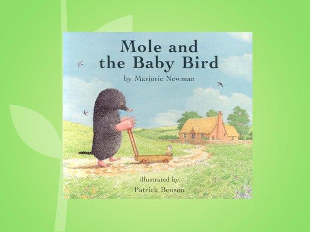 Mole And The Baby Bird Vocabulary by Jennifer Klostermann