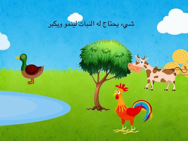 حاجات النبات by Eman Alawadhi