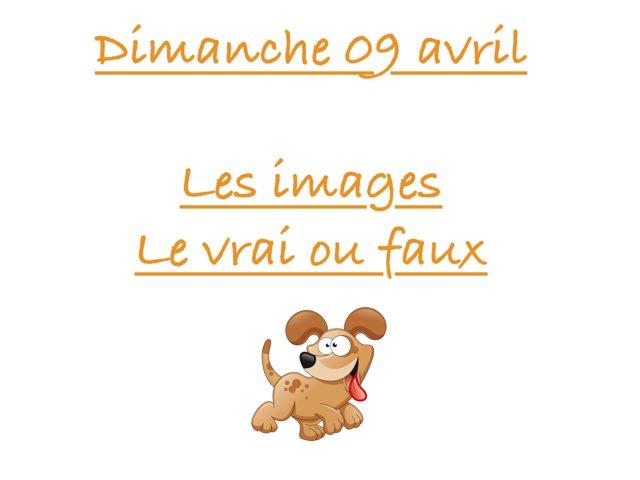A - Dim09 - Images Et Vrai Faux  by Caroline Gozdek