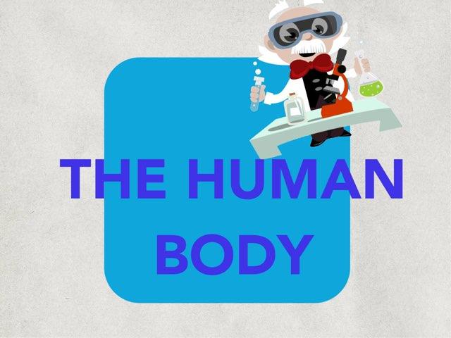 The Human Body  by María Serrano