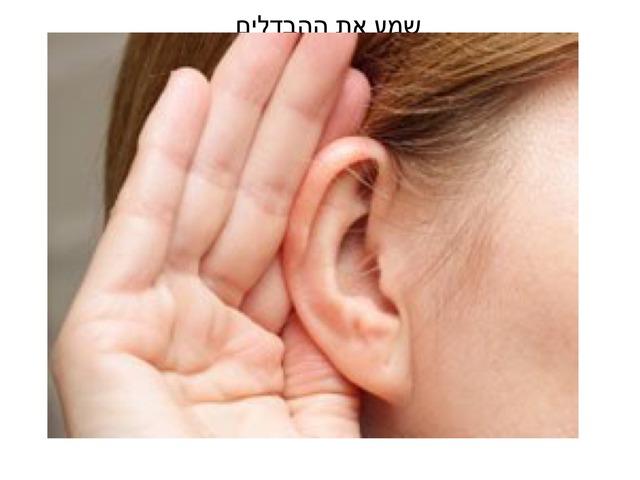 שמע את ההבדלים by אורית כהן