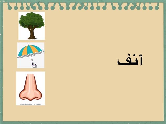 انف by ملاك محمد