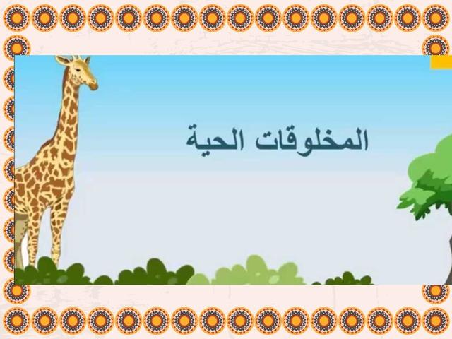 وحدة المخلوقات الحية الوحدة الأولى الصف الرابع الفصل الدراسي الأول by Hanadi Alharbi
