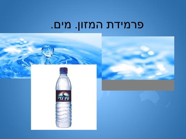 מים. פרמידת המזון. by מיתל ירושלים