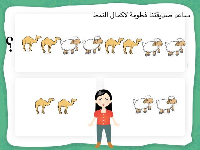 البيئة البية by Anayed Alsaeed