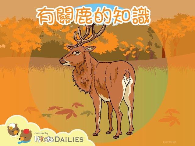 鹿 by Kids Dailies