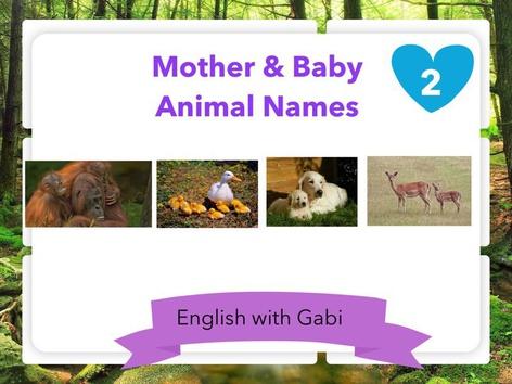 Mother & Baby Animal Names- Part 2 by English with Gabi אנגלית עם גבי