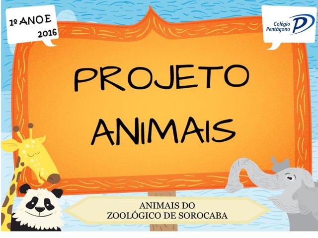 Ebook_1ºanoE by Fernanda Lourenco