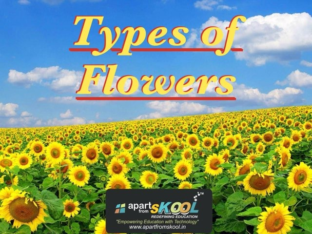 Types Of Flowers by TinyTap creator