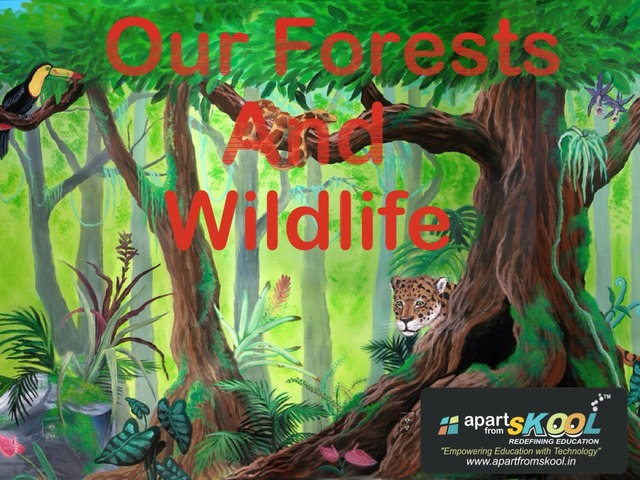 Our Forests And Wildlife by TinyTap creator