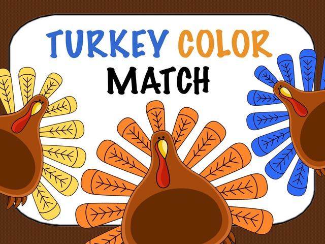 Turkey Color Match by Cici Lampe