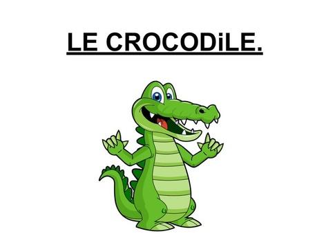 Toucher Le Crocodile. by Valerie Escalpade