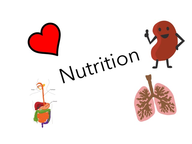 Nutrition by David Pazos Lago
