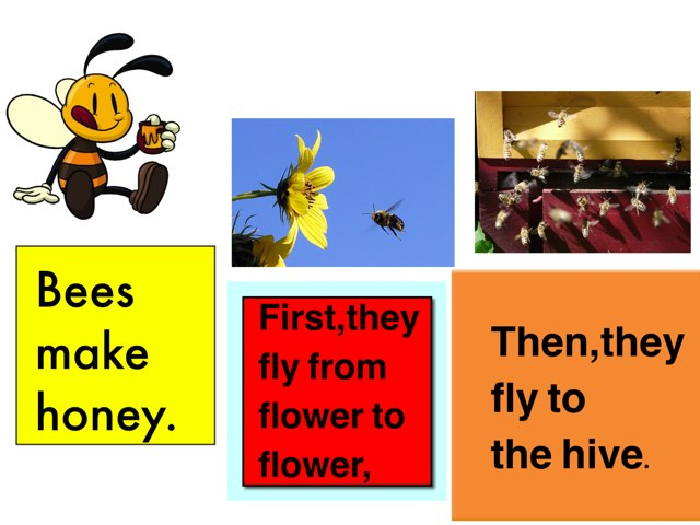 Bees Make Honey by Mariam Abu Kamar