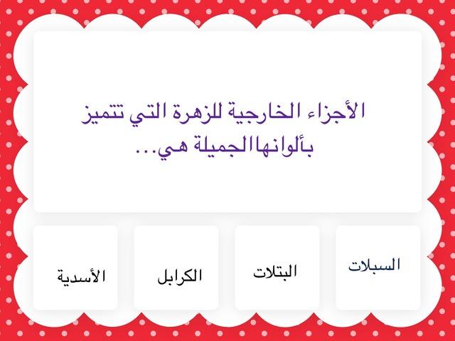 اختبار تجريبي by Alia Al-ahmmed