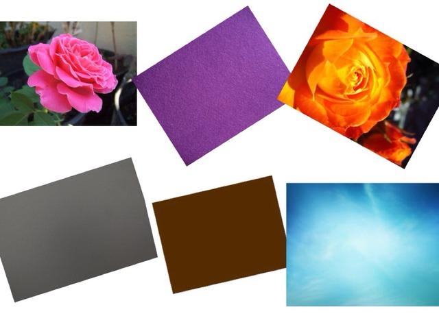 Colours  by Marta Edo Monlleó