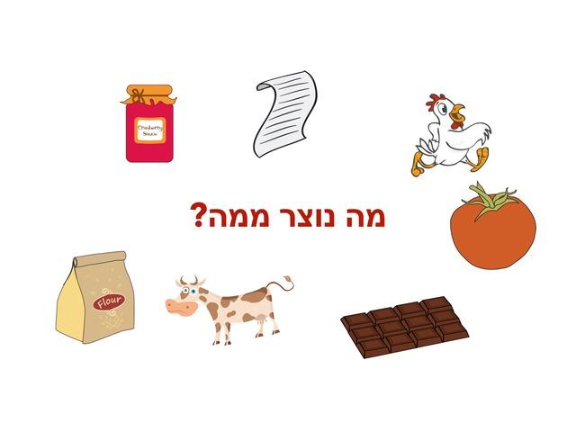מה נוצר ממה? by adi ben shahar