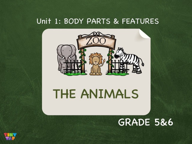 The Animals : BODY PARTS & FEATURES by Laurence Micheletti