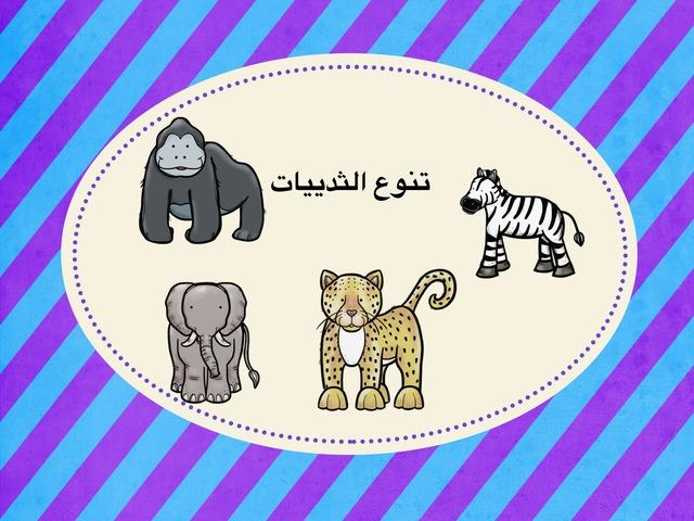 تنوع الثدييات by نورة أحمد
