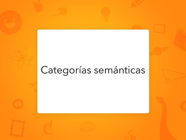 Categorías Semánticas  by Ahmed Almaliki