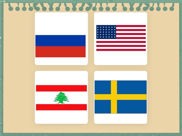 הדגל by מכללה תלפיות