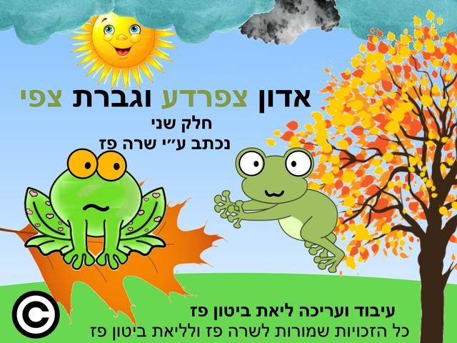 אדון צפרדע וגברת צפי by Liat Bitton-paz
