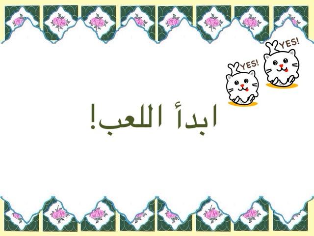 دانيا الحليلي by Dania الحليلي