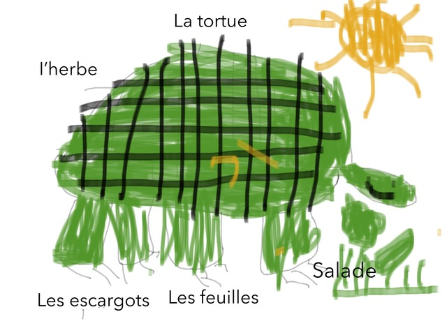 La Tortue  by Classe Ecolint
