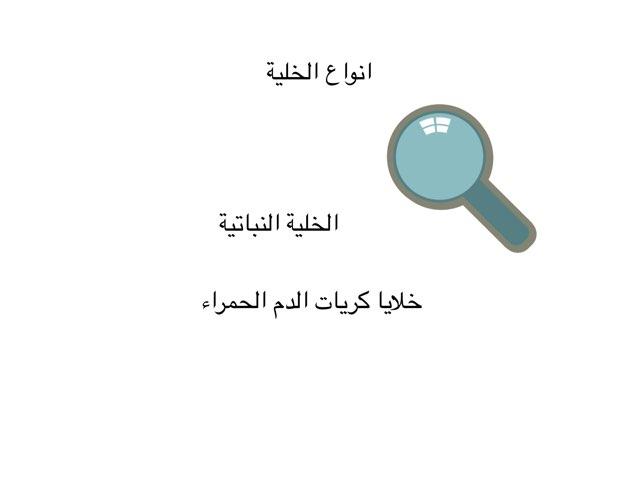 لعبة 2 by Abeer Fakirah