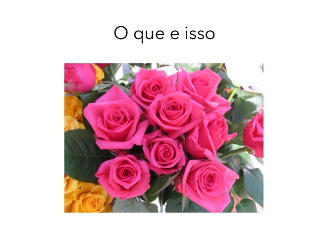 Isso e o que by Maria Clara Fragoso Cavalho