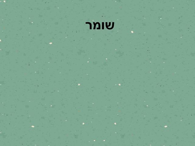 אוצר מילים כיתה ד by עדן שמואל