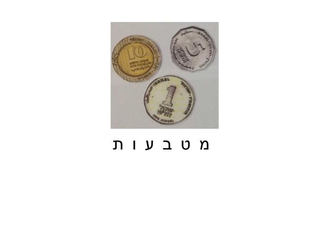 פאזל שטרות ומטבעות by Rotem Pinko