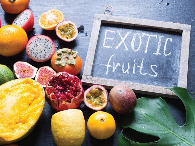 Exotic Fruits by Danna Sosa