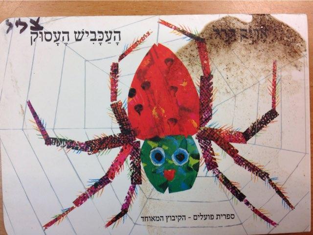 העכביש העסוק by Inna Idelman