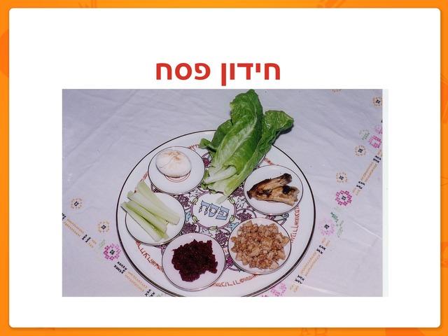 חידון פסח by מיכל כהן