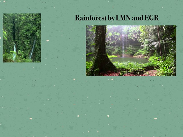 Rainforest By ER And LN by Holy Spirit