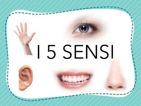I 5 SENSI by Veronica Zonta
