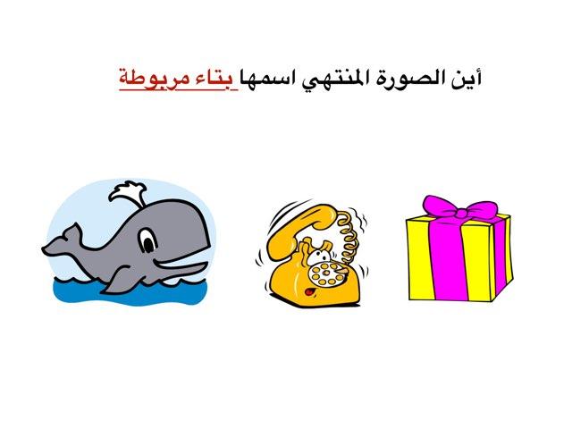 لعبة 16 by سحر العجمي