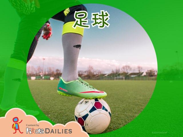 关于足球的知识 by Kids Dailies