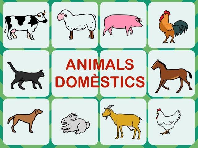 ANIMALS DOMÈSTICS by Lo Formador