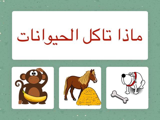 ماذا تاكل الحيوانات  by Hadi  Oyna