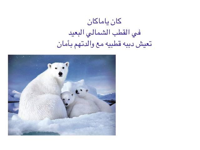 قصة الدب القطبي by Mubark Almotery