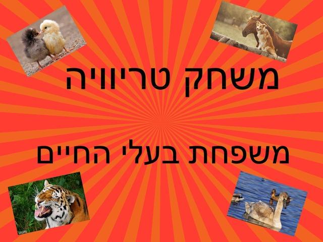 אוריה משפחת בעלי חיים by בית ספר קישון