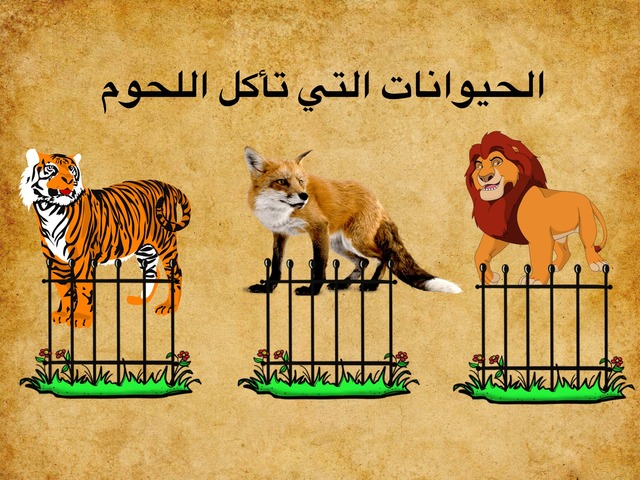 الحيوانات وغذائها by fatimhalsharif