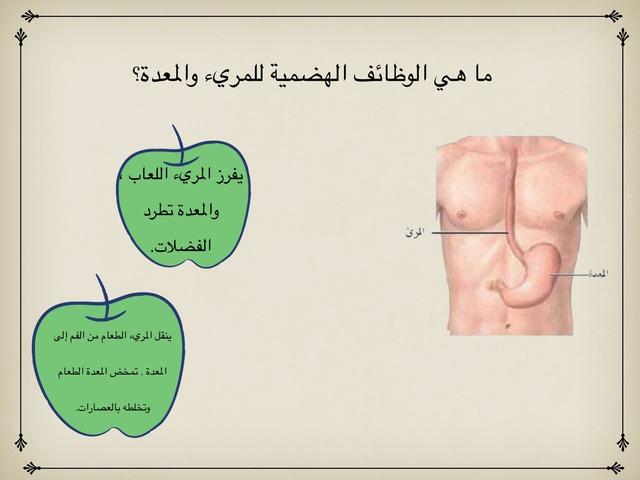 كيف يعمل الجهاز الهضمي؟ by Eman Alawadhi