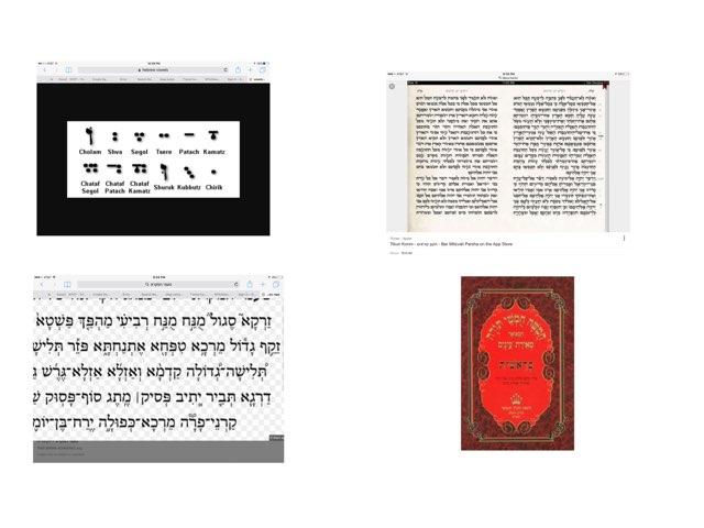Munach Revii by Moshe Rosenberg