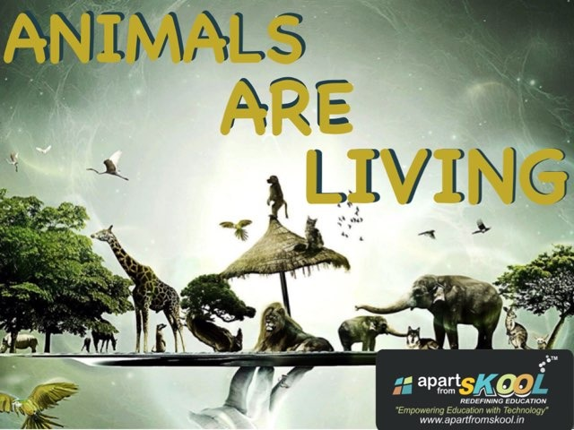 Animals Are Living by TinyTap creator